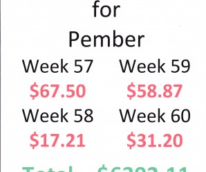 Pennies for Pember