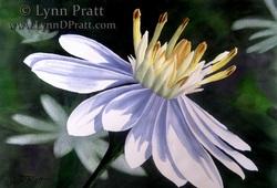 Lynn D. Pratt