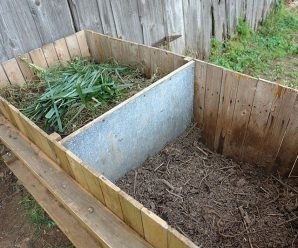 Composting with Brian ~ June 30 6PM