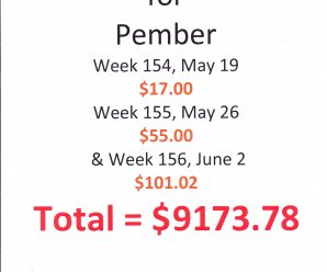 Pennies for Pember up to $9173.78