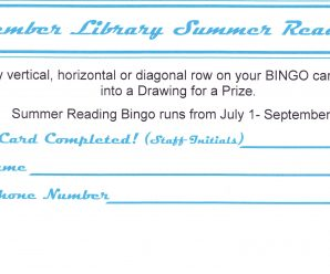 Summer Reading Bingo for Teens and Adults