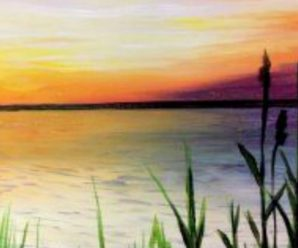 Paint & Sip at the Pember June 18